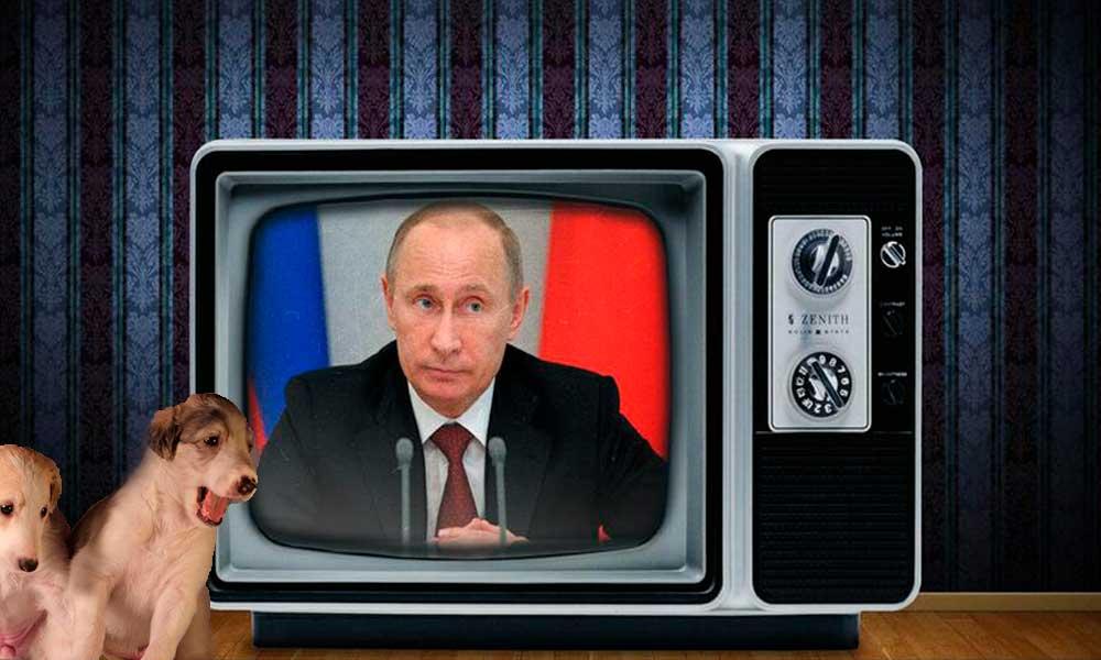 Путин, Путин, Путин. Налоговики продолжают шпионаж в сети. Борзые Юридическая защита