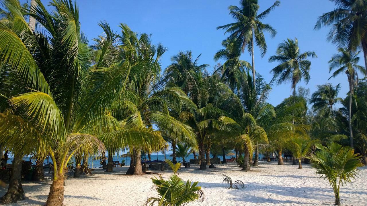 Может ли работодатель отказать в предоставлении отпуска? Юридическая защита Трудовой кодекс Трудовое законодательство суд заработная плата
