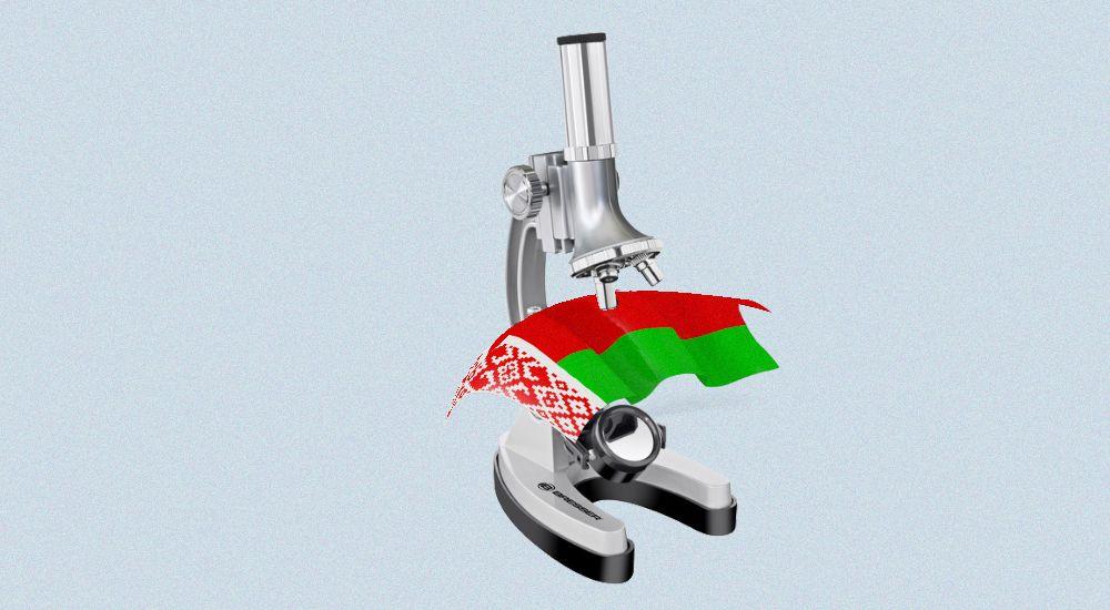 Как проверить контрагента из Беларуси: 10 полезных ресурсов