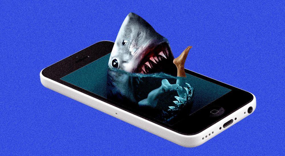 Когда в России начнут ловить телефонных мошенников