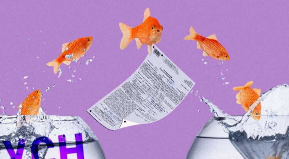Как вести бухгалтерию для ИП на УСН 6%: пошаговая инструкция