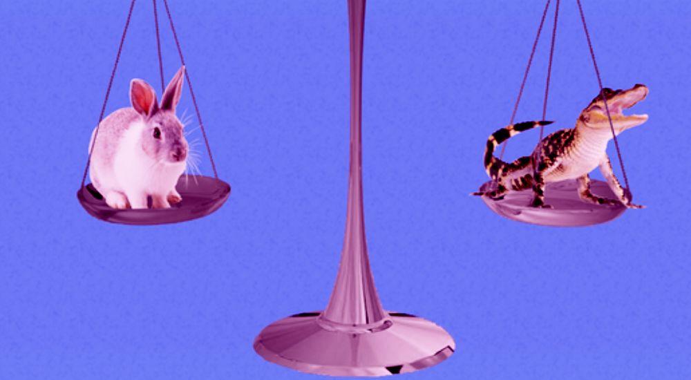 Субсидиарная ответственность: 10 интересных споров 2019 года