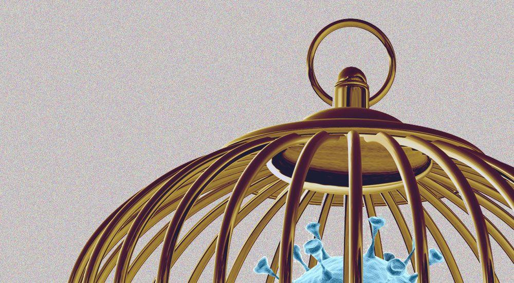 Золотая клетка. Как заработать в самоизоляции