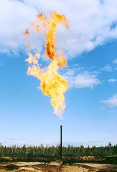 Компания ТНК-ВР, занимающаяся разработкой Верхнечонского нефтегазоконденсатного месторождения на севере...