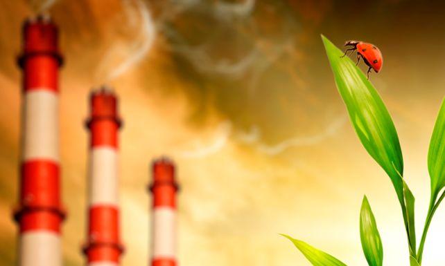 Плата за негативное воздействие на окружающую среду: бухгалтерский и налоговый учет