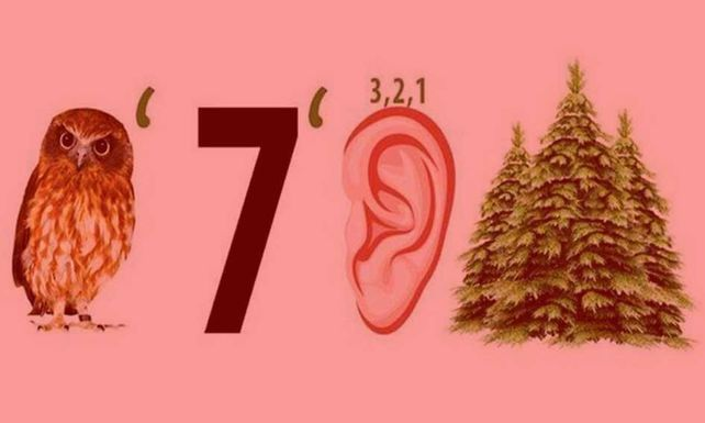 Все про НДС 20%: расчеты про повышение цен, ликование обнальщиков и опыт других стран