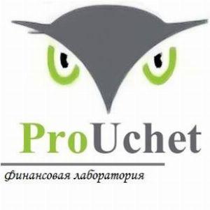 ProUchet - пользователь клерк.ру